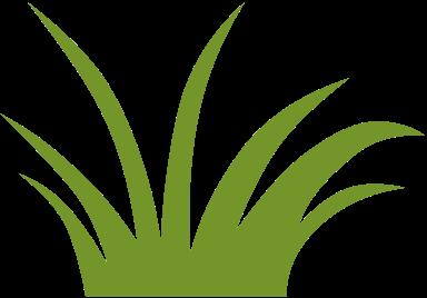 grassbueschel biobase fusszeile